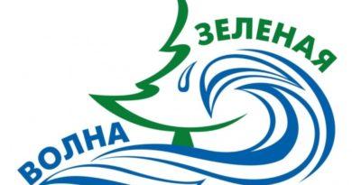 Активисты приглашают на экологическую акцию «ЗЕЛЁНАЯ ВОЛНА — ЗА ЧИСТЫЙ ПРУД!»