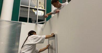 Активисты ОНФ принимают участие в организации выставки молодых пензенских художников